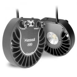 KESSIL A80 Tuna Sun 15 W - Spot LED pour aquarium d'eau douce