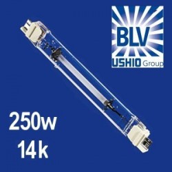 BLV Nepturion 250 Watts 14000K° FC2
