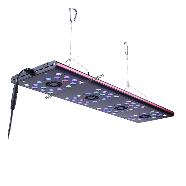 EVERGROW Rampe LED AquaOcean IT5080 - 288 Watts - 800mm