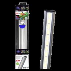 LUMIVIE RAL G2 20 Watts LEDs SBM Blanc/Bleu Rampe Led pour Eau de Mer - 60cm
